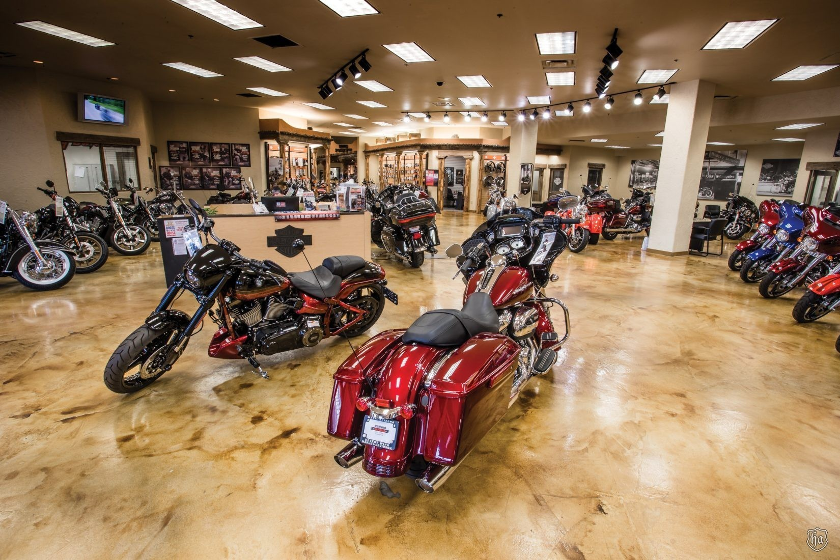 Ray Croghan S Desert Wind Harley Davidson 174 Highline
